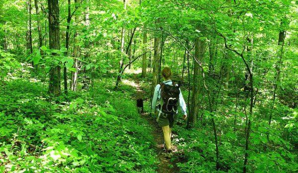 Eureka Springs hiking
