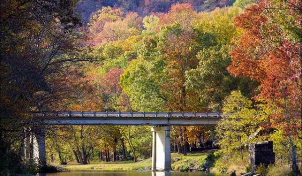fall foliage in Eureka Springs