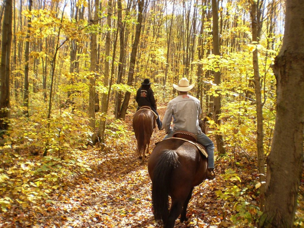 Horseback Riding at Dogwood Canyon Nature Park near our Eureka Springs Bed and Breakfast