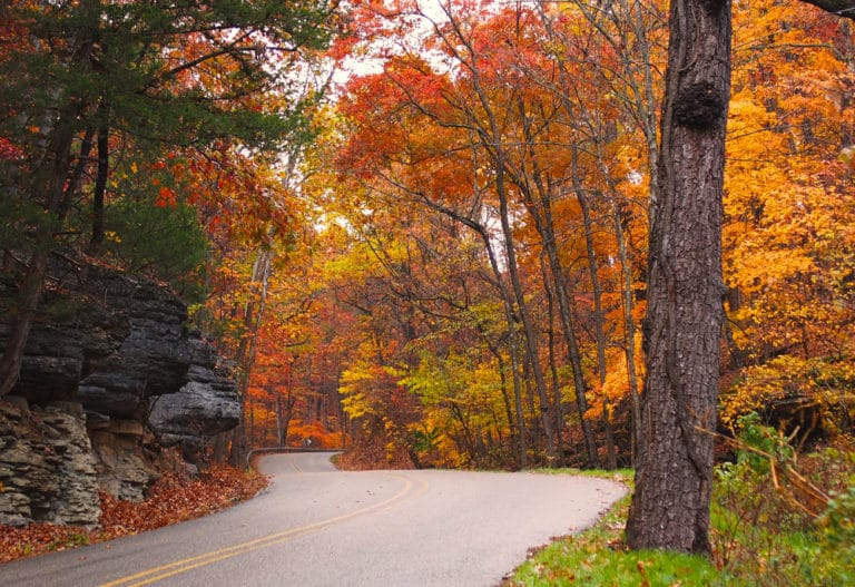 Enjoy a scenic drive through Eureka Springs fall foliage near our Bed and Breakfast