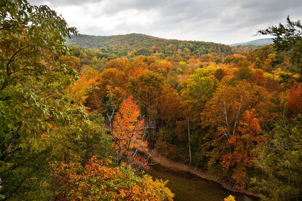 The Best Train Ride in Arkansas This Fall is in Eureka Springs
