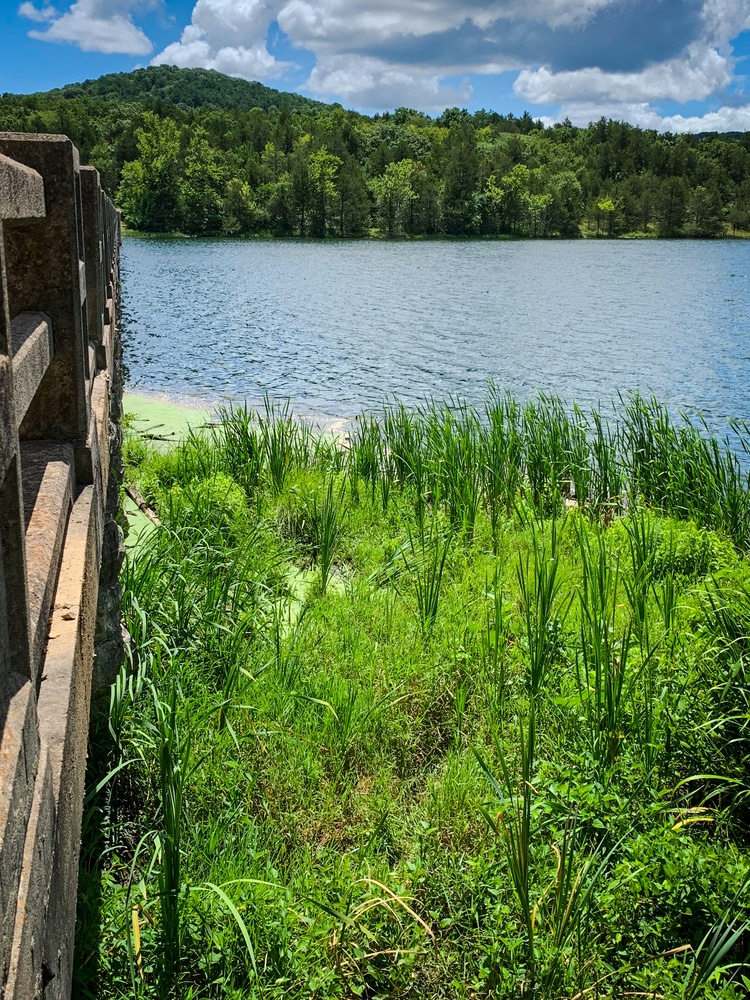 Enjoy a day of adventure at Lake Leatherwood City Park near our Eureka Springs Bed and Breakfast
