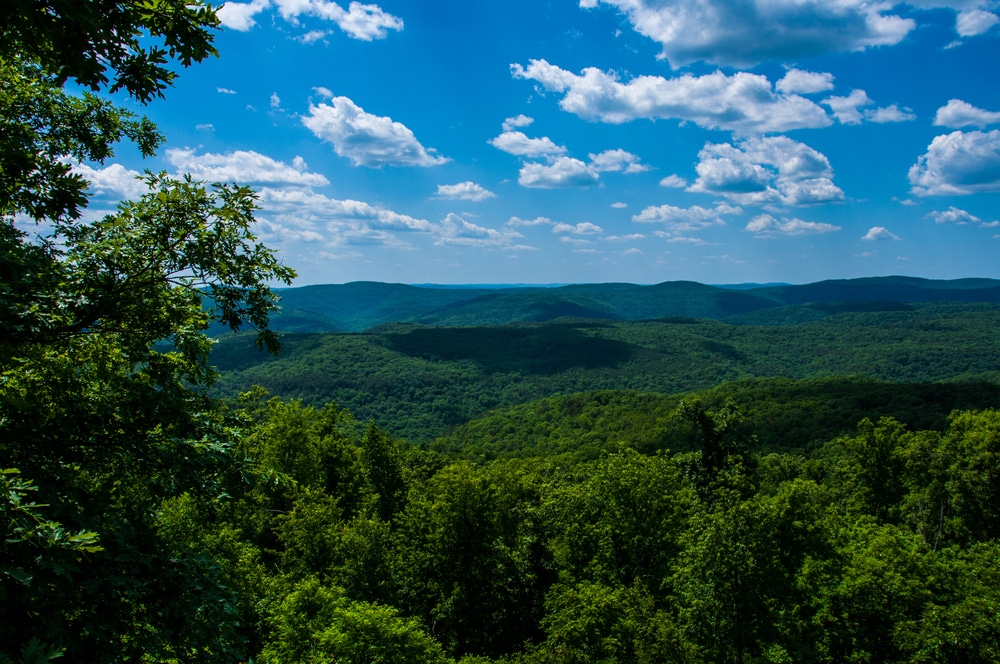 Ozark Mountain ziplines is a great way to take in the scenic beauty of the mountains!